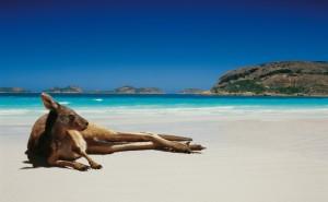 Australia: clessidre nella doccia